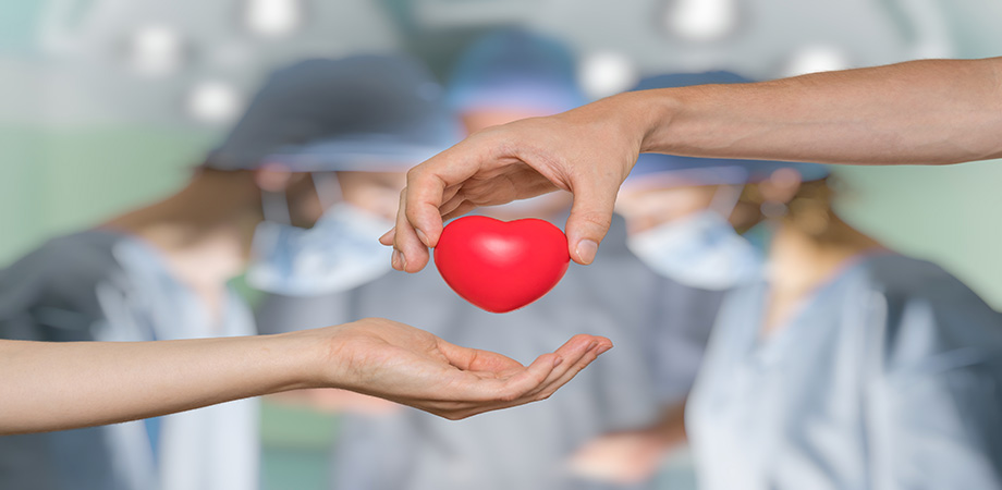 don d'organes - se faire prélever ses organes - registre national des refus - greffe d'organes - parler de la mort