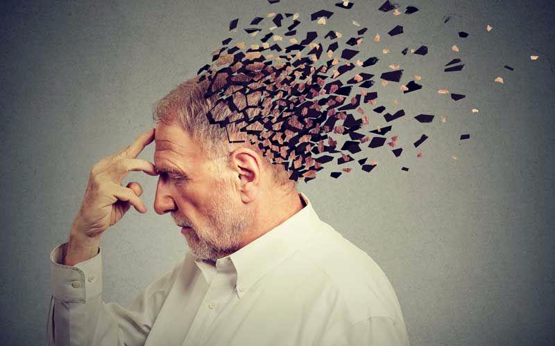 Vieillissement d'un cerveau sénior
