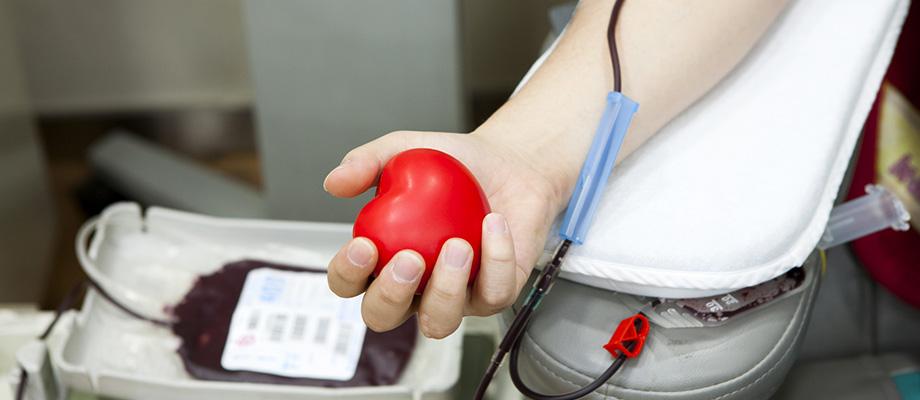 don de sang - donner son sang - ou donner son sang - comment donner son sang - journee mondiale don du sang