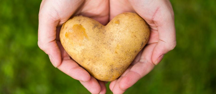 manger des féculents - feculent - pates alimentaires - se faire plaisir - bon petit déjeuner - bien manger - alimentation - qualite nutritionnelle