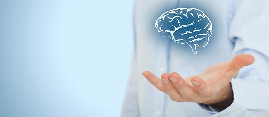 cerveau, tete, tête, organe cerveau,, prendre soin de son cerveau, ménager sa tete, se doper, alzheimer